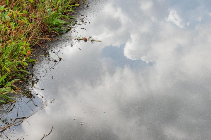東京都北区鹿浜:台風の荒川土手