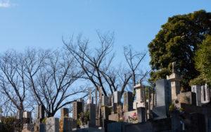 東京都港区南青山:青山霊園