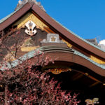 東京都文京区湯島:湯島天満宮の梅まつり2020