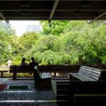 東京都千代田区永田町:国会前庭 北庭