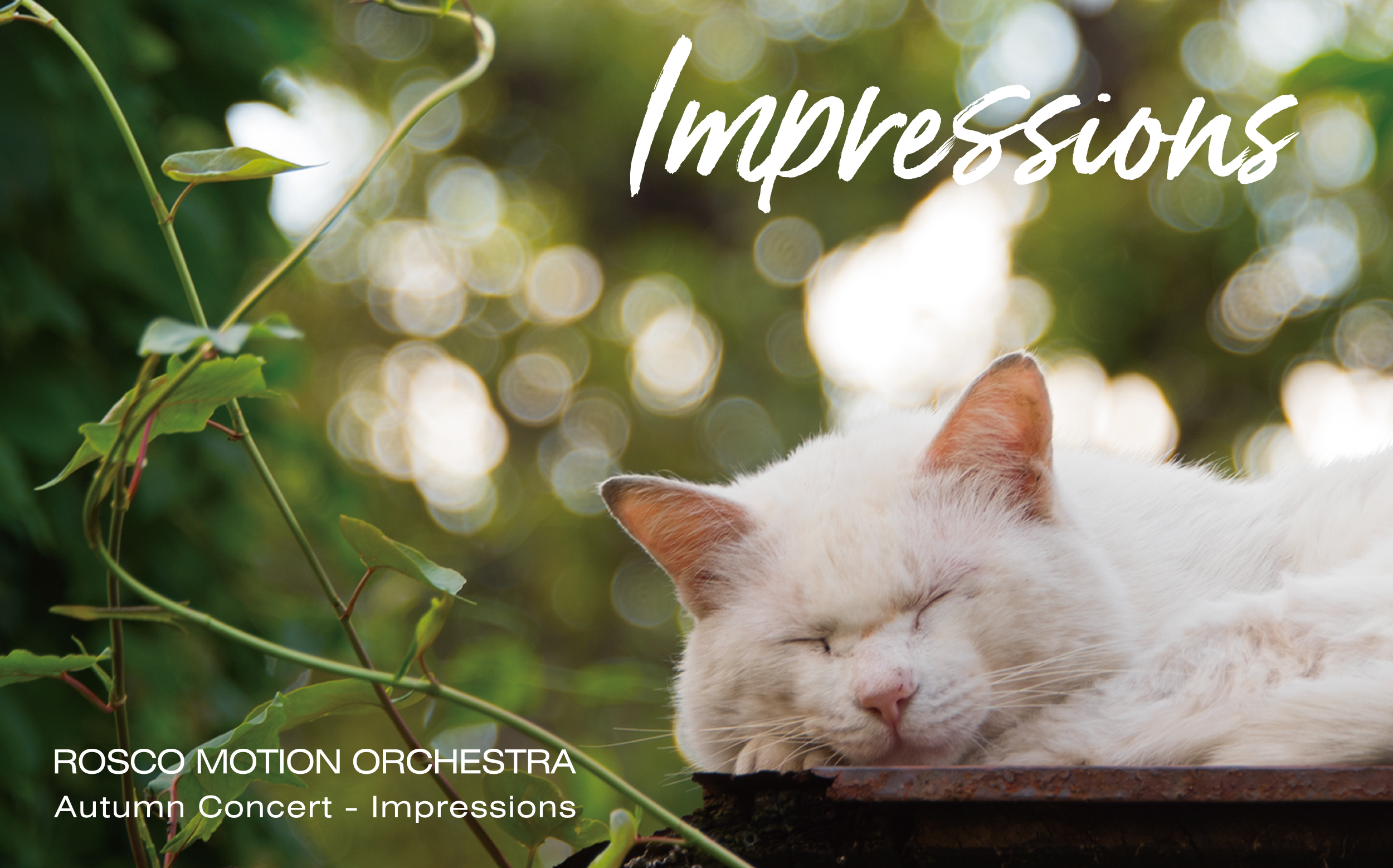 ROSCO MOTION ORCHESTRA Autumn Concert「Impressions」